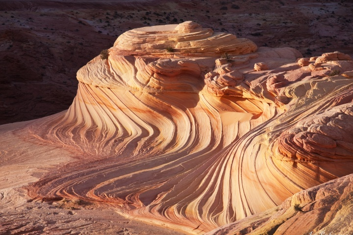 Wave in north coyote buttes WP