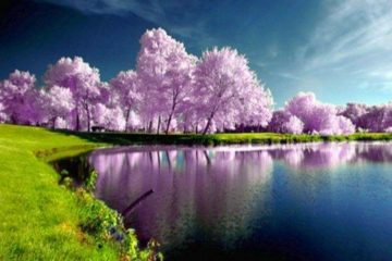 May nature spring AnteAr